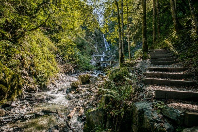 Uno stretto sentiero che diventa sempre più ripido conduce alla cascata di Eifersbacher. , © TVB Kitzbüheler Alpen - St. Johann