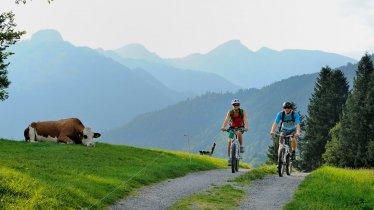 Mountain-bike Kaiserwinkel, © Tirol Werbung/Alexander Ziegler