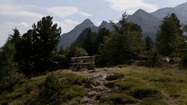 Sentiero dell'aquila, tappa 13: Innsbruck – Sentiero tra i pini cembri – Innsbruck, © Tirol Werbung/Jenewein Markus