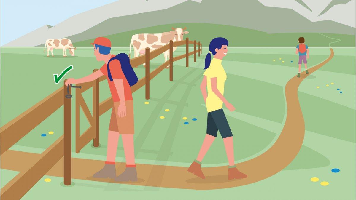 Il comportamento adatto 9, © Landwirtschaftskammer Tirol