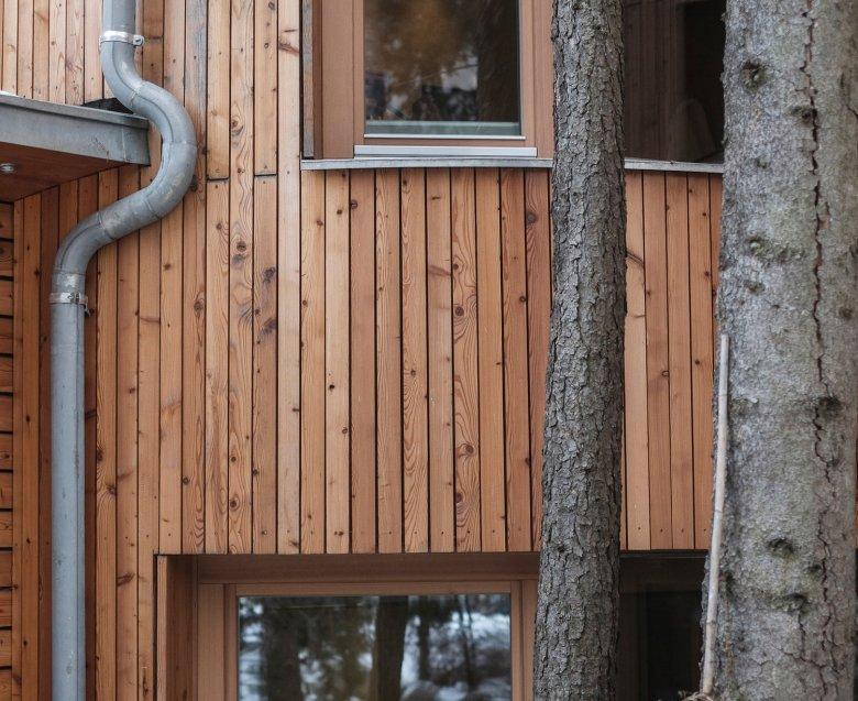 Baum-Holz
