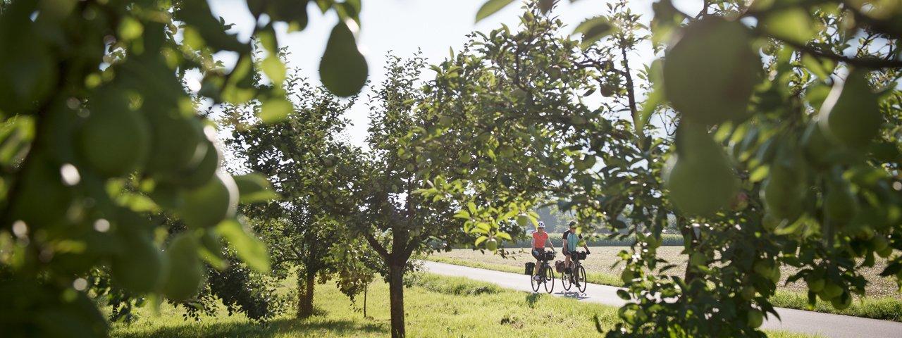 Pista ciclabile dell'Inn, © Tirol Werbung/Frank Bauer