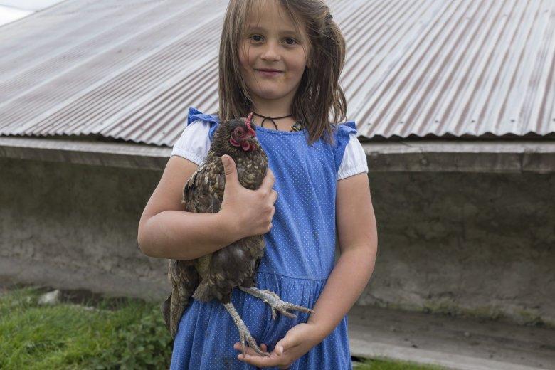Anche le galline vanno curate: la piccola Tamia ama occuparsi degli animali.