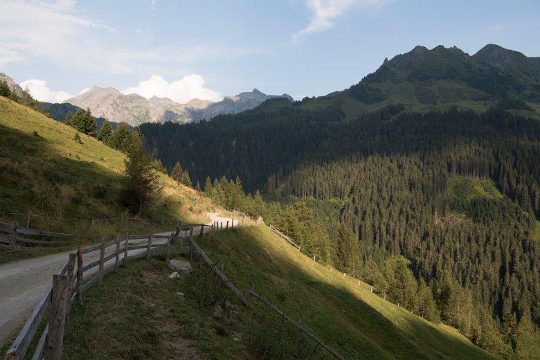 La strada sterrata che porta all'alpeggio Peer Alm è ideale anche per una passeggiata con la famiglia.