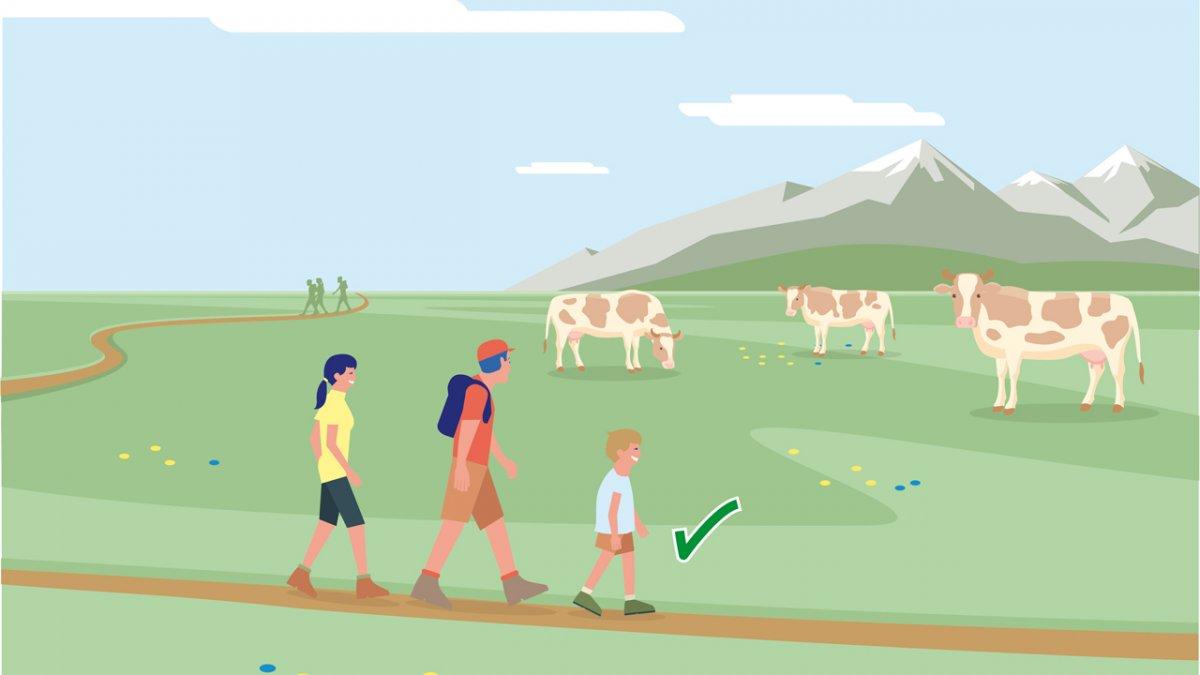 Il comportamento adatto 5, © Landwirtschaftskammer Tirol