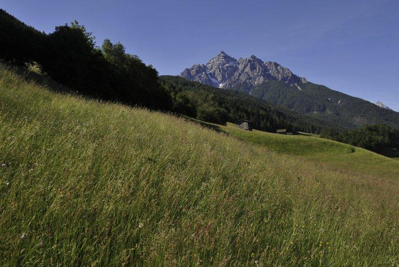 Una montagna o il gigantesco re Serles con il suo seguito?