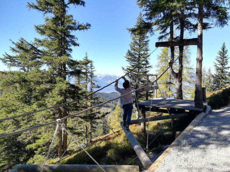 """Nel bosco si trova un parco avventura libero, per """"audaci"""" esperienze su percorsi di tronchi e corde, arrampicate, di tutto di più!"""