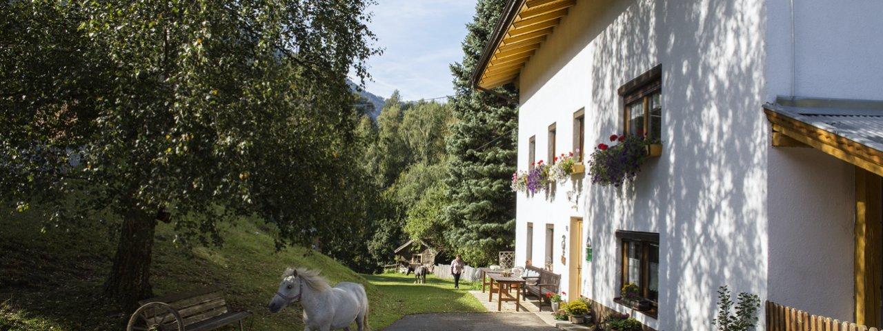 La fattoria delle erbe Sagenschneider's a Ried, © Tirol Werbung/Lisa Hörterer