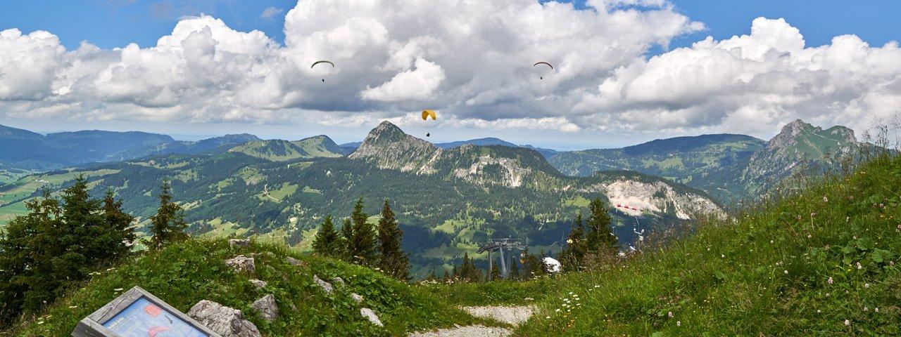 Il sentiero avventure Neunerköpfle, © TVB Tannheimer Tal / Achim Meurer