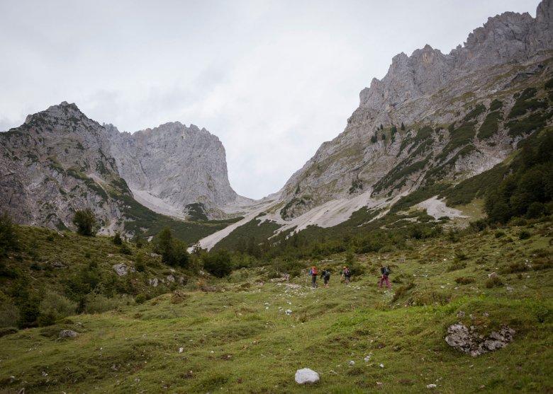 In cammino ai piedi del Wilden Kaiser. , © Tirol Werbung, Jens Schwarz