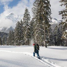 Escursioni con le racchette da neve nella regione del lago Achensee, © Achensee Tourismus