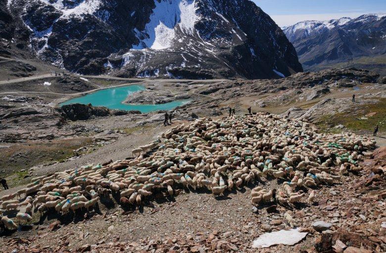 Incastonato tra l'Hochjochferner e la Graue Wand il lago glaciale sembra turchese allo stato liquido.