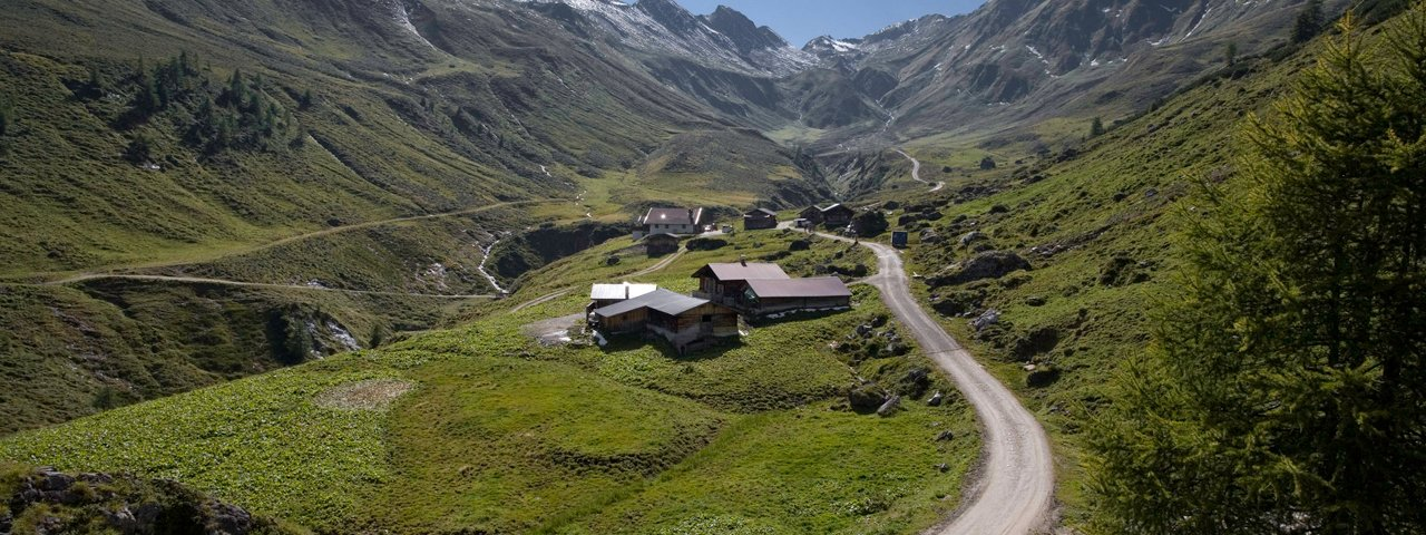 Il caseificio si trova sulla bella malga Junsalm, © Tirol Werbung / Maren Krings
