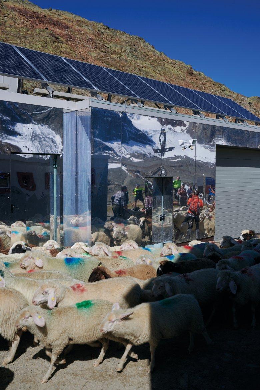 > Senza le pecore a rallentare il passo, dall'Hochjoch Hospiz a monte della malga Rofenberg bastano tre ore per raggiungere il Bellavista.