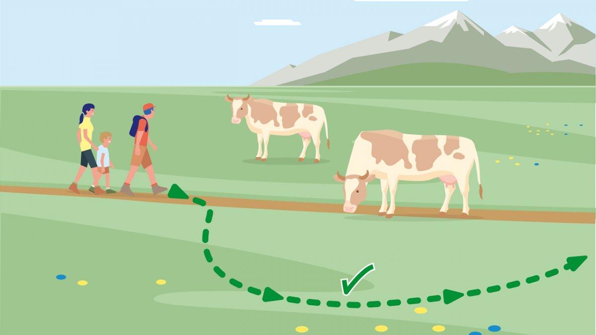 Il comportamento adatto 6, © Landwirtschaftskammer Tirol