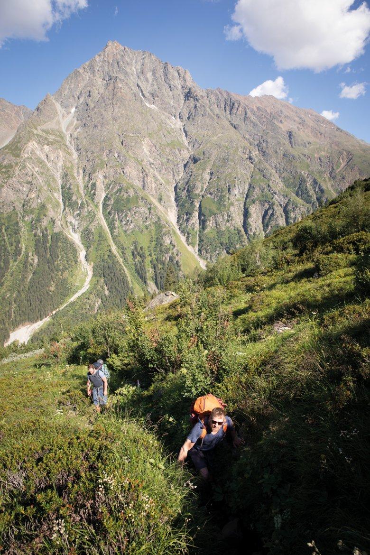 Durante la salita al rifugio Kaunergrathütte si attraversano tutte le fasce di vegetazione alpina.