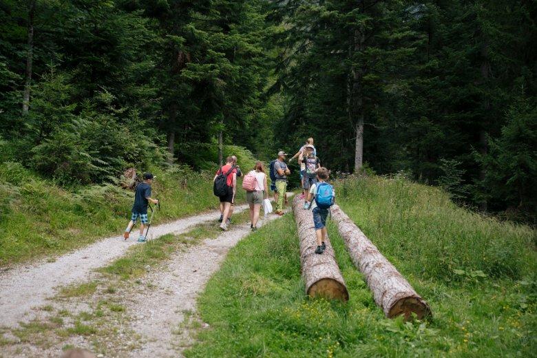 I bambini sono in primo piano durante le escursioni.