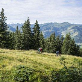 Fleckalm Trail, © Tirol Werbung/Peter Neusser