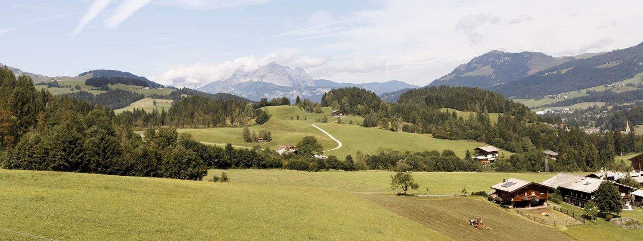 Fieberbrunn, Timoks Alm, © Tirol Werbung/Robert Pupeter