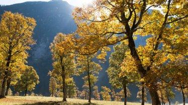 Aceraia nell'Eng, © Tirol Werbung/W9 Studios