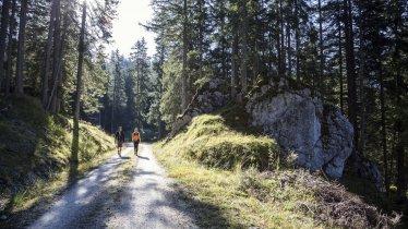 Escursioni nella valle Gaistal, © Tirol Werbung/Dominik Gigler